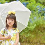立川花火大会2019は雨でも開催?雨天中止?延期有無や台風情報と天気予報