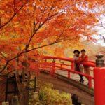 伊香保温泉の紅葉2018!見頃時期やおすすめ穴場スポット、河鹿橋ライトアップ情報