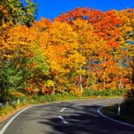 奥多摩の紅葉狩り2018の見頃時期や穴場な絶景名所、おすすめドライブコース