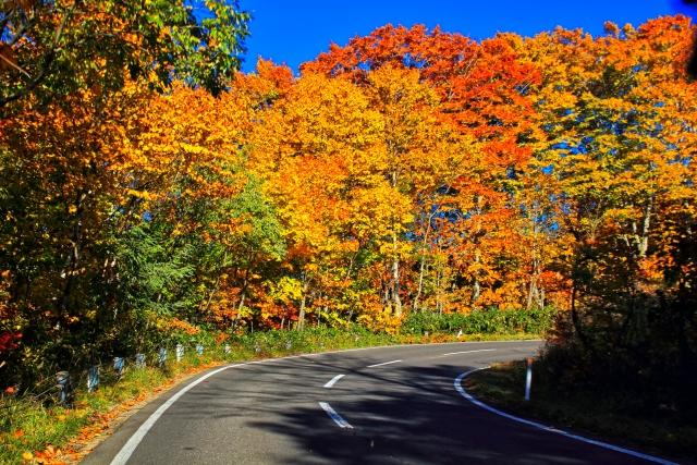 奥多摩の紅葉狩り2019の見頃時期や穴場な絶景名所、おすすめドライブコース