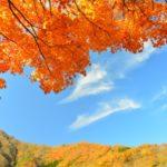 那須高原の紅葉2018!見頃時期やおすすめ穴場スポット、混雑、渋滞、駐車場情報