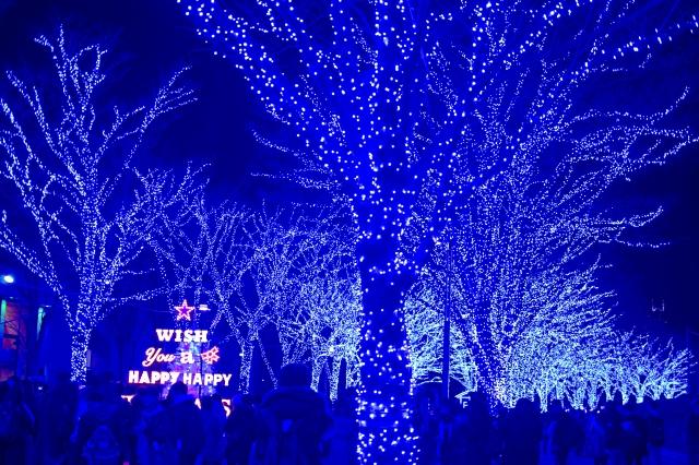 青の洞窟渋谷2019の場所へ行き方、アクセス方法!開催期間や料金、駐車場情報