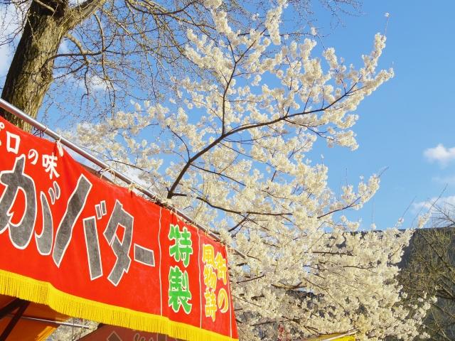 目黒川の桜の屋台出店情報