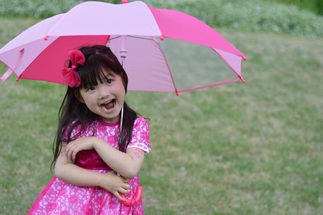三浦海岸桜まつりは天気が雨でも開催?河津桜のライトアップ実施有無