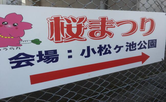 三浦海岸桜まつりの案内板