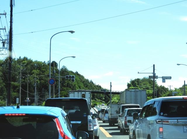 広島フラワーフェスティバル2019の混雑や渋滞、交通規制、通行止め情報と来場者数