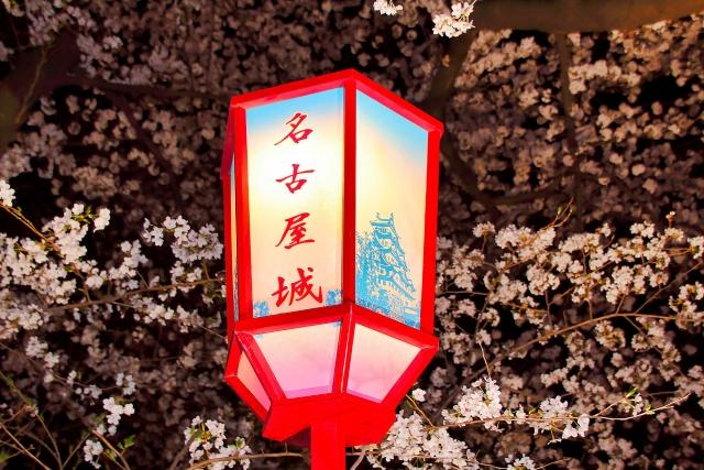 名古屋城の夜桜ライトアップ