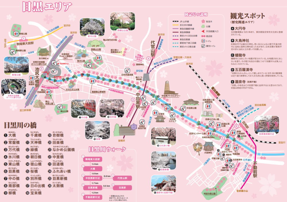 目黒川の桜マップ