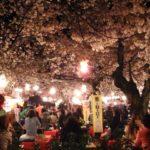 京都関西の花見スポットで屋台出店のおすすめは?場所と時間、食べ物情報