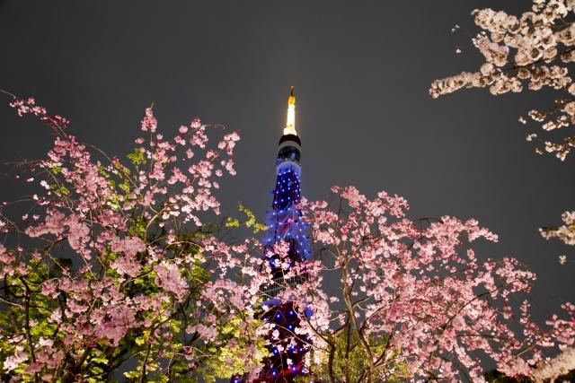 東京関東の桜ライトアップ2019でおすすめスポットはどこ?点灯時間や期間