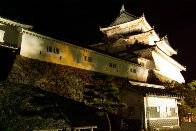 和歌山城の夜桜ライトアップ