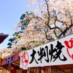 大阪関西の花見スポットで屋台出店のおすすめは?場所と時間、食べ物情報