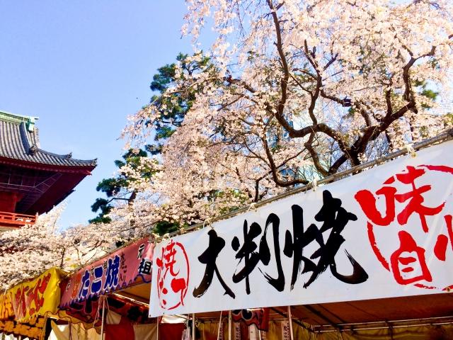 造幣局 桜の通り抜けの花見2019で屋台出店露店の場所や営業時間、ランチ情報