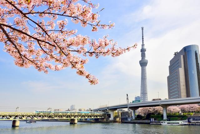 隅田川(隅田公園)桜祭りの花見2019で屋台出店露店の営業時間や食べ物情報
