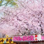 上野公園の桜花見2019の屋台出店露店の場所やおすすめグルメ、営業時間