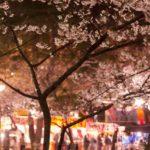 埼玉大宮の花見スポットで屋台出店のおすすめは?場所と時間、食べ物情報