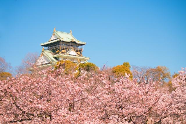 大阪城公園の桜花見2020の見頃満開時期と開花状況!ライトアップや屋台出店