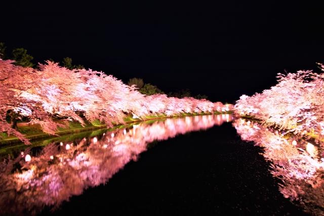 角館桜まつりの夜桜ライトアップ情報