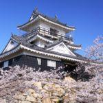浜松城桜祭りの花見2019の屋台出店露店のおすすめグルメや営業時間