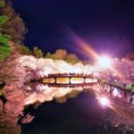 東北の桜ライトアップ2019でおすすめスポットはどこ?点灯時間や期間