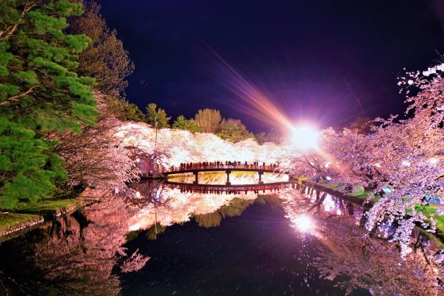弘前公園の夜桜ライトアップ