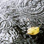 越谷花火大会2019は雨でも開催?雨天中止?延期有無や天気予報と台風情報