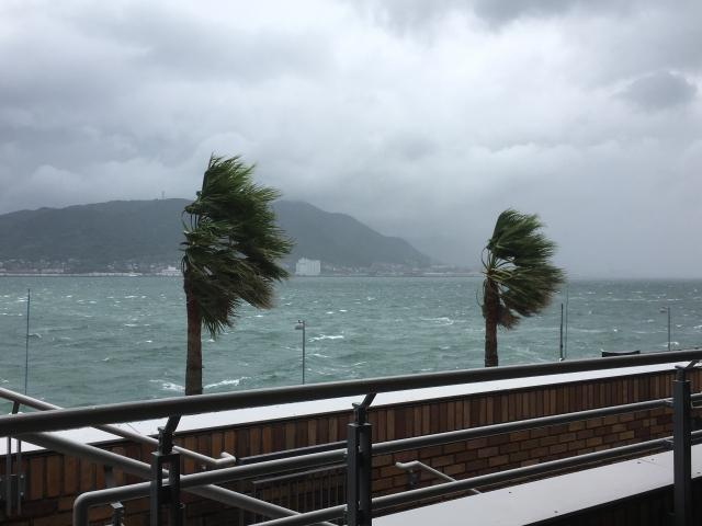 隅田川花火大会2019は台風6号で中止?開催有無の発表はいつ?日程情報