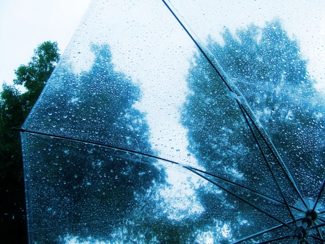 甲賀流にんにん大花火2019は雨でも開催?雨天中止?順延延期や天気予報