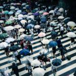 伊丹花火大会2019は雨でも開催?雨天中止?順延、延期の有無や天気予報