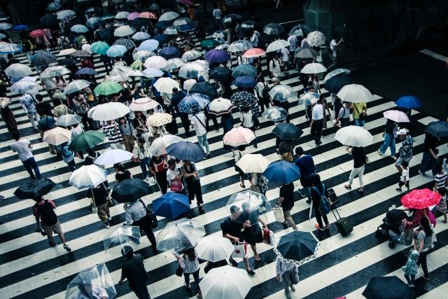 イナズマロックフェス2019は雨天中止?雨でも開催?台風と延期や払戻返金情報