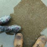 赤川花火大会2019は台風で中止?雨でも開催?順延延期と払い戻し情報