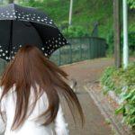 流山花火大会2019は雨でも開催?雨天中止?順延、延期の有無や天気予報