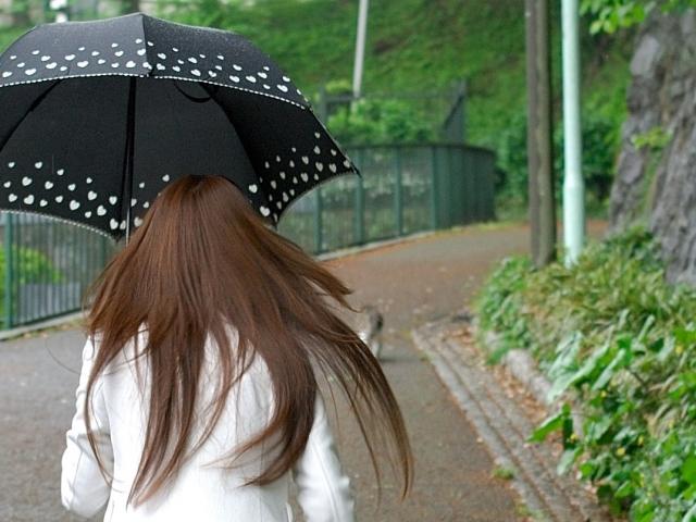 名古屋まつり2019は雨天中止?雨でも開催?順延延期の有無と天気予報